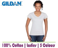 Fitted Ladies VNeck T
